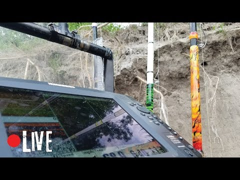 Fishing Cut Banks On The River - LIVE