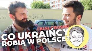 Co Ukraińcy robią w Polsce? #113