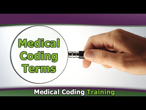Basic Medical Coding Terminology — Medical Coding Terms