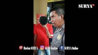 Download INI TAMPANG PENGEDAR PIL KOPLO KHUSUS PELAJAR @35 RIBU PER BUTIR Mp3