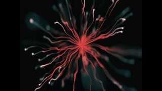 Dense - Exhale (Full Album)