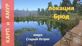 Русская рыбалка 4 озеро Старый Острог Карп и амур мост через брод