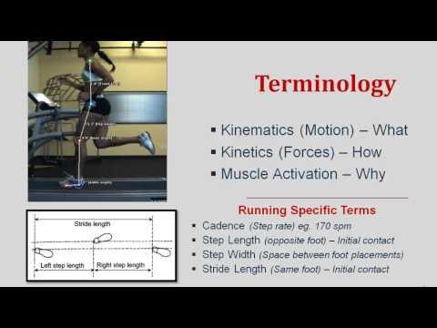 Gait Biomechanics- Simplified