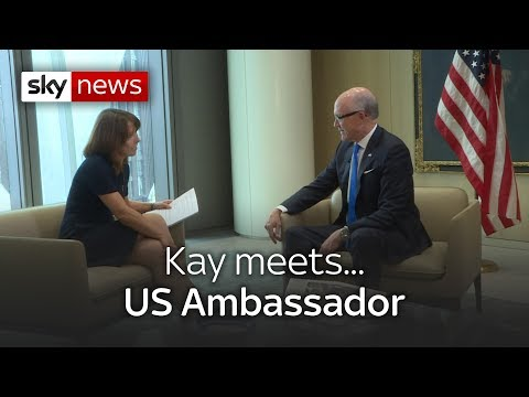 Kay meets... US ambassador to the UK