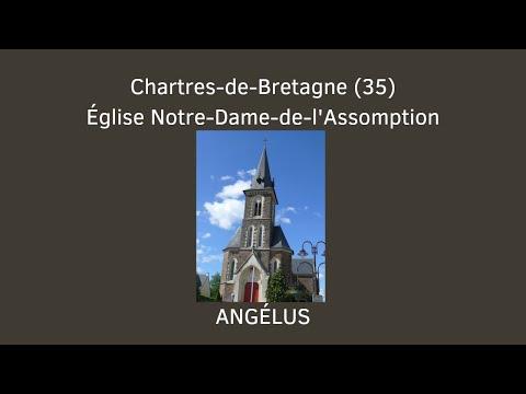 Ang lus de l 39 glise notre dame de l 39 assomption de chartres for Piscine 35 chartres de bretagne