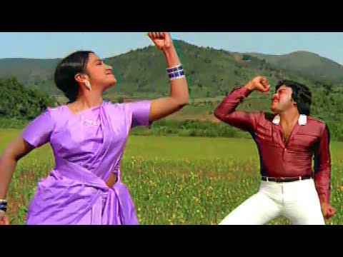 Telugu Super Hit Video Songs | Telugu Full Josh Songs | Volga Videos