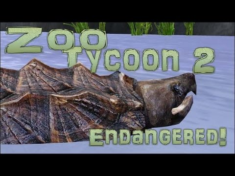 Endangered Quest! Spotting a Snapping Turtle! - Episode #6