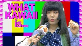 NOT KAWAII! What is NOT Kawaii in Japan?