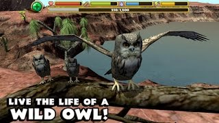 Owl Simulator -Part 2 By Gluten Free Games -Compatible with iPhone, iPad, and iPod touch.