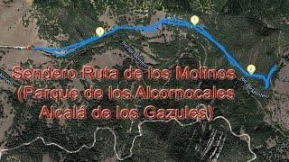 Sendero Ruta de los Molinos (Parque de los Alcornocales, Alcalá de los Gazules, Cádiz)