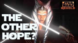 What if Leia wasn't the 'other' Yoda spoke of?  Did Ahsoka ever meet Luke?