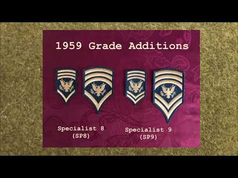 US Army Specialist Insignia Of Grade - A Brief History