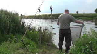 Barbel fishing 1