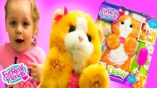 FurReal Friends Интерактивная игрушка Игривый котенок Дэйзи