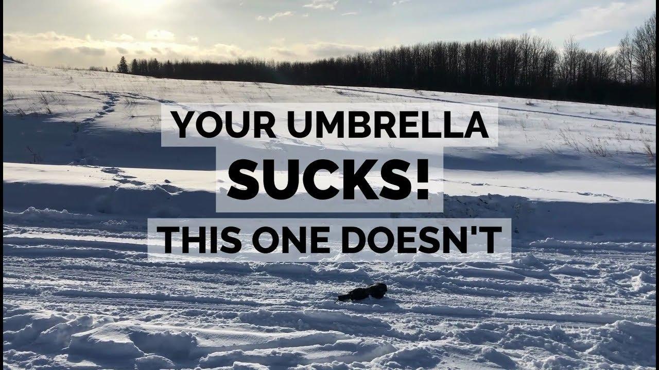 43de4698f Hedgehog Carbon Fiber Windproof Umbrella for Sale – Carbon Fiber Gear