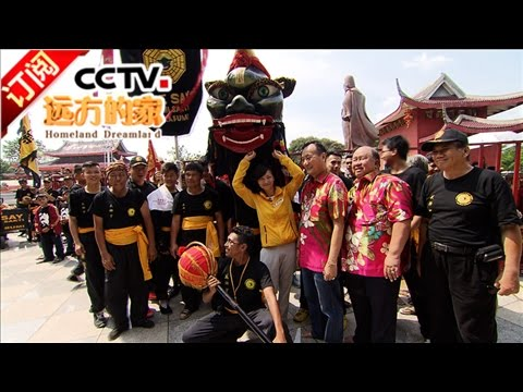 《远方的家》 20170121 东南亚的华人情   CCTV-4