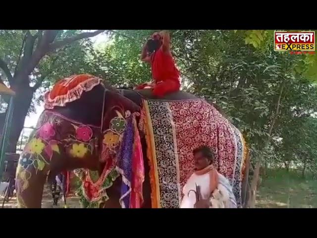 बाबा भी न.....जगह देखी नही तो लगे योगासन करने....अब हाथी के ऊपर चढ़ के योग करेंगे