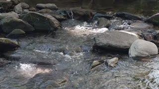Repeat youtube video YOSOY – La Montaña y el Agua