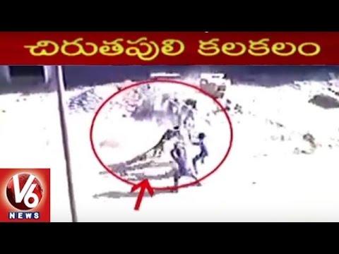 Cheetah Hulchul at Meerut in Uttar Pradesh   Attacked on Villagers   V6 News