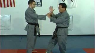 Ji, Han Jae Hapkido Cross Hand Technique 1