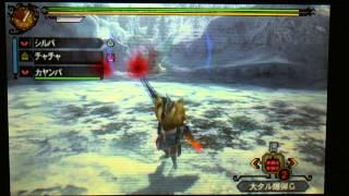 MH3G【シルバがゆく!2頭のジンオウガ亜種を追え】 thumbnail