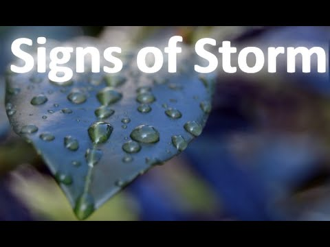 Signs of Storm - Twitch Music Composing Session 21
