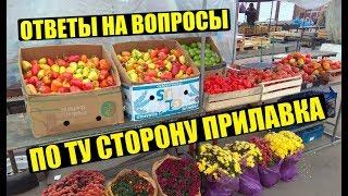 Всё! о рыночной торговле в одном видео