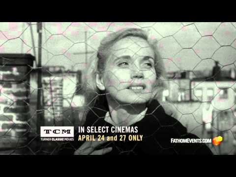 On the Waterfront Trailer