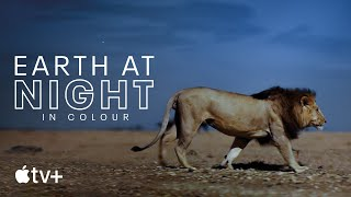 Earth At Night In Colour — Official Trailer | Apple TV+