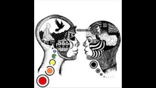 Spectro Senses - Human Culture
