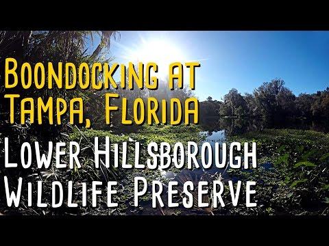 Boondocking at the Lower Hillsborough Wildlife Preserve, Tampa FL