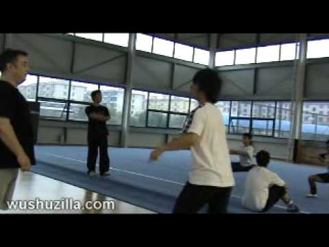 Yang Yu Hong - Spinning Training