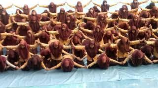 Tari Saman MAN 2 Jombang