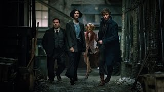 fantastic beasts and where to find them   tv spot new strange things 30s wo hd   16 november 2016