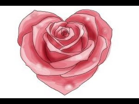 Heart And Rose Love Drawings How to draw a H...