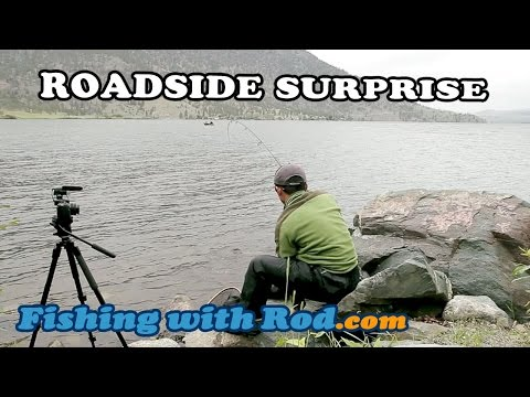 ROADSIDE SURPRISE - CATCHING BULL TROUT AT NICOLA LAKE NEAR MERRITT BC   Fishing With Rod