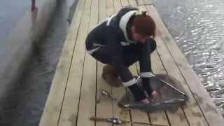 """Рыбалка в """"Роял-фиш"""" 05.04.2015."""