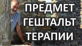 Предмет гештальт терапии Даниил Хломов 2013(Лекция