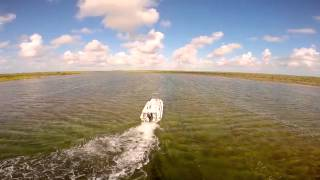 Buccaneers & Bones in South Andros - Nervous Waters