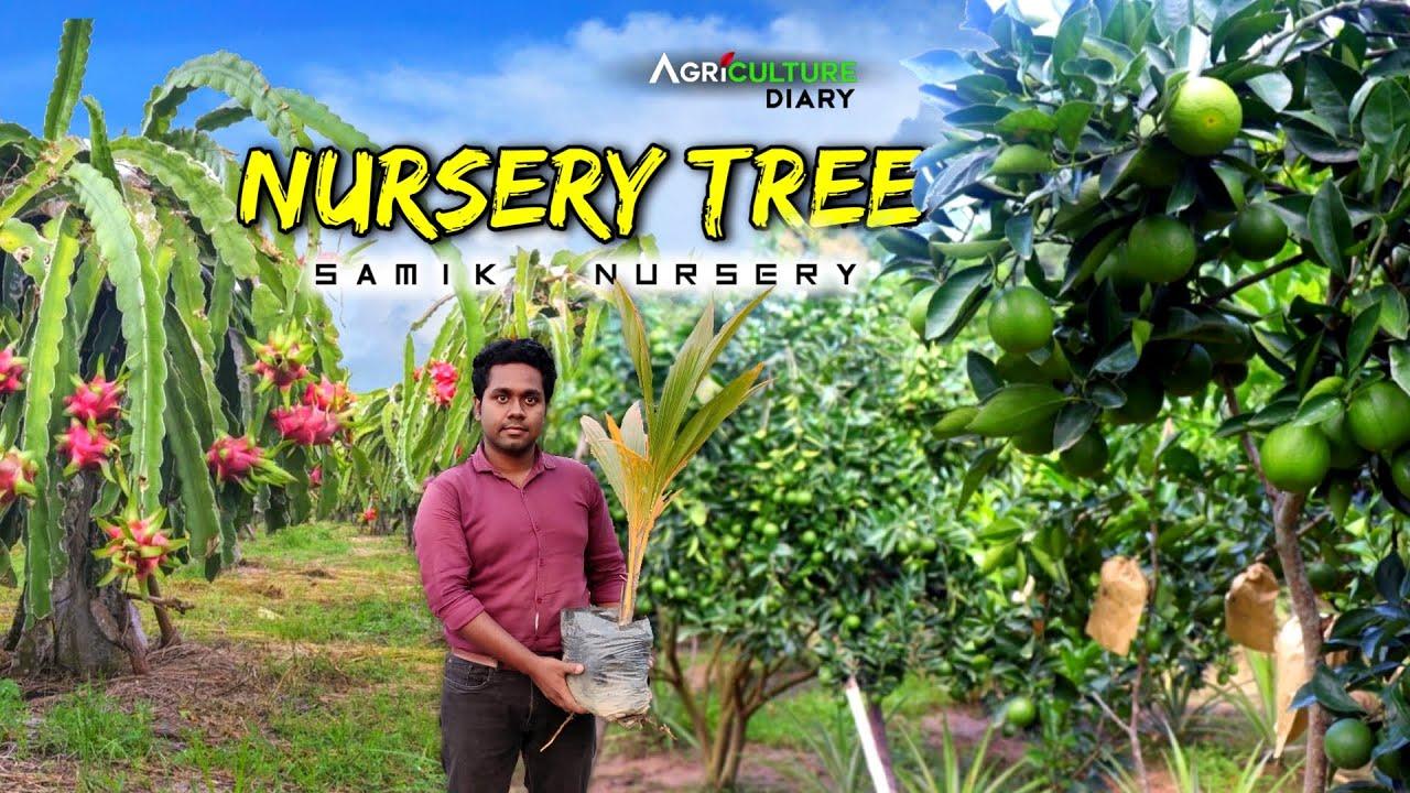পশ্চিমবঙ্গে বিদেশি ফলের নার্সারী | Nursery Tree | Plant Nursery | Fruit Nursery