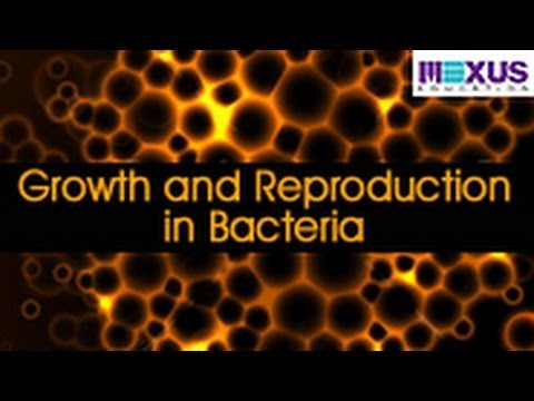 Growth and Reproduction in Bacteria