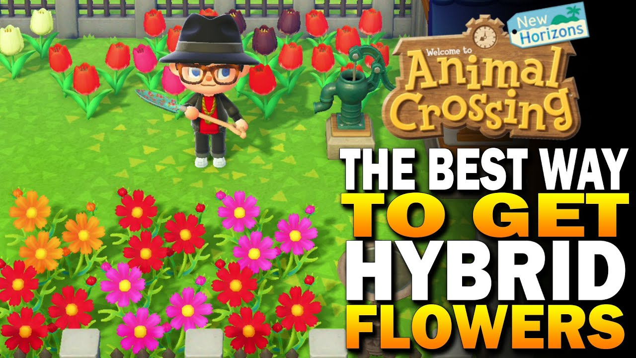 The Best Way To Grow Hybrid Flowers In Animal Crossing New