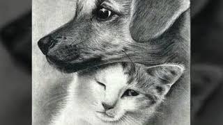Самые красивые рисунки