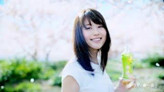 伊藤園「お~いお茶」新TV-CM『新鮮、春一番』篇が2/1より全国O.A.開始...