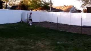 Soccer chicken