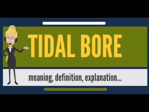 What is TIDAL BORE? What does TIDAL BORE mean? TIDAL BORE meaning, definition & explanation