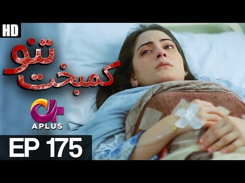 Kambakht Tanno - Episode 175 - A Plus ᴴᴰ Drama