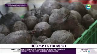 Житель Архангельска месяц жил на МРОТ: что из этого вышло - МИР24