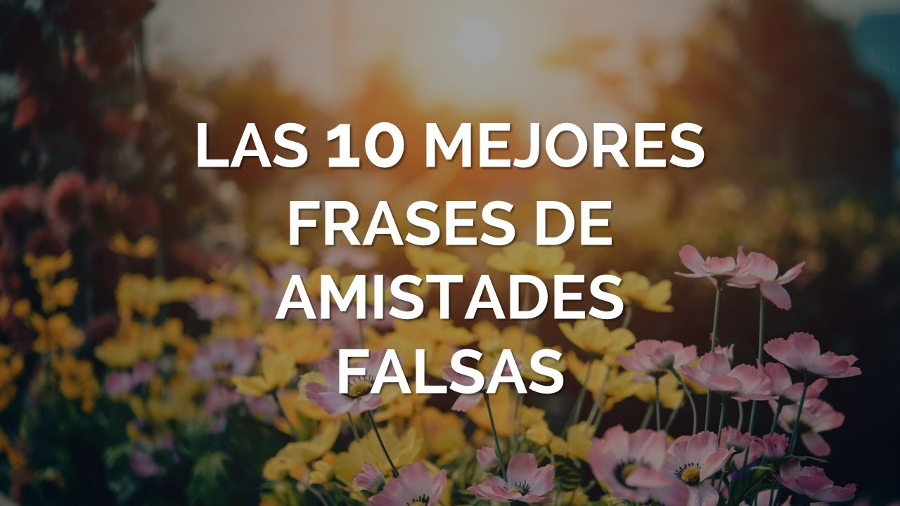 Las 10 Mejores Frases De Amistades Falsas
