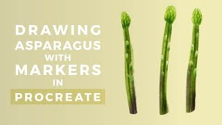 Drawing Asparagus with Markers in Procreate :: Bardot Brush